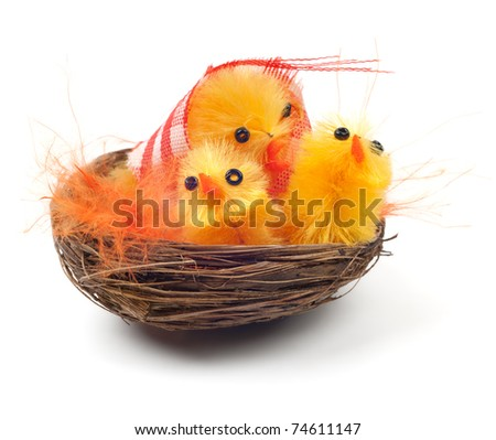 Easter chicks in a nest isolated on white background