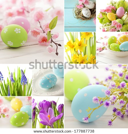 Easter collage easter eggs and spring flowers