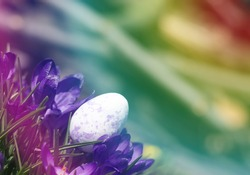 Easter composition in rainbow colors. Purple Easter egg in beautiful purple colors.