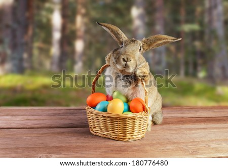 Easter cute bunny sitting with basket of colored eggs on background of spring nature