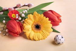 Easter decorations, spring flowers and quail egg. Orange gerbera daisy, red tulips, pussy willow, primrose and baby's breath flowers on cream background. Close-up on multicolor springtime flowers.