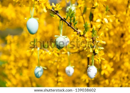 easter egg decoration hanging on forsythia tree outdoor in spring