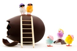easter egg with toy chicks withe background