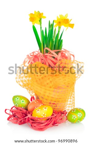 Easter eggs and spring yellow narcissus (daffodil) in flower pot with dright decoration isolated on white background