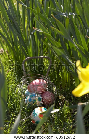 Easter Eggs Hidden In Daffodils For Egg Hunt
