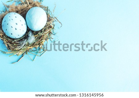 Easter eggs in a nest of grass. Blue background Copy space #1316145956