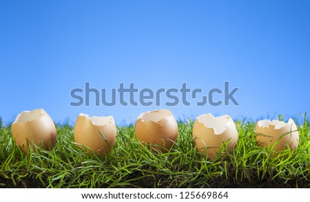 Easter Eggs in Grass with a Blue Background.