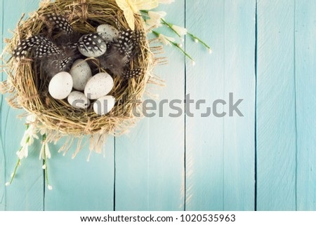 Easter eggs in nest on rustic wooden planks. Easter background #1020535963