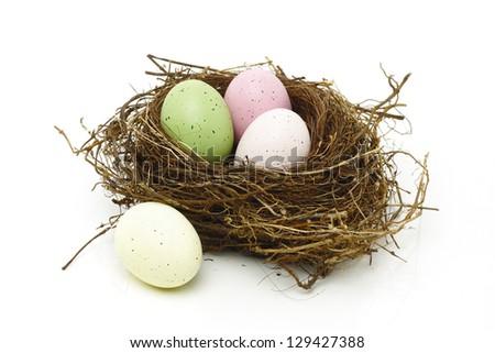 Easter eggs in real bird nest