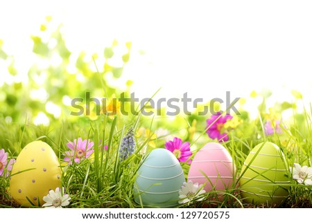 Easter eggs on meadow with spring flower