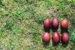 Easter eggs on the green grass. Colored eggs on a beautiful background, there is a place for text. Concept: Happy Easter