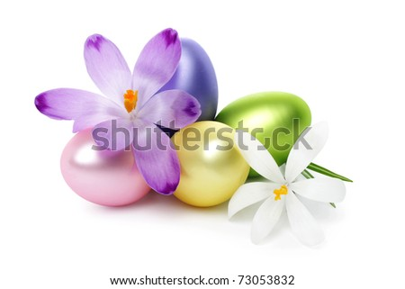 Easter eggs with crocus flower isolated on white - stock photo