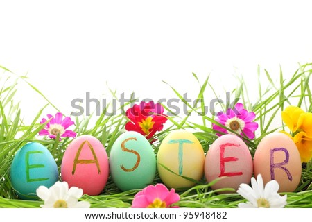 Easter Eggs with Daisy on Fresh Green Grass