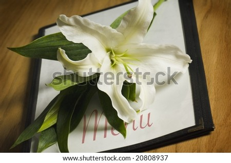 Easter lily on menu - stock photo