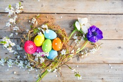 Easter nest with colorful eggs - Greeting card and spring background