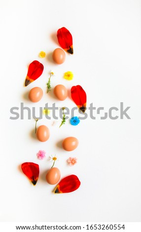 Easter pattern of Eggs with flowers petals and candies on the white background. Easter concept. Healthy feeding concept.