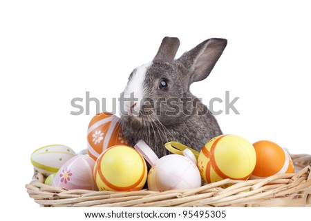 Easter rabbit inside a basket full of painted easter eggs  (isolated on white)