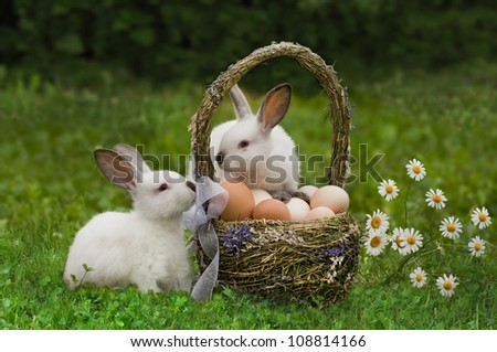 Easter Rabbits near an easter basket with eggs