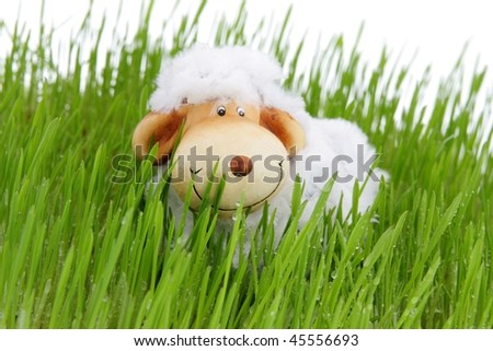 [Obrazek: stock-photo-easter-sheep-on-fresh-green-...556693.jpg]