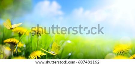 easter spring flower background ...