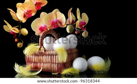 Easter sunrise, white eggs and spring yellow orchid with drop of dew