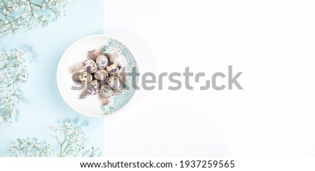 Easter table setting concept with quail eggs on plate with white flowers on pastel white and light blue backdrop. Easter festive banner. Passover minimal table. View from above. Copy space. Foto d'archivio ©