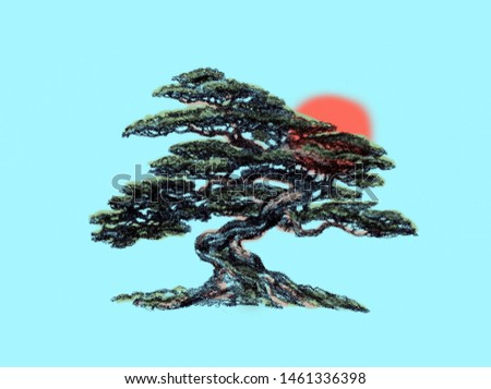 Eastern coniferous bonsai.  Spreading branches.Tree of Life.