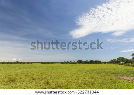 Eastern Plains in Colombia #522731044
