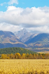 Eastern Sayan Mountains with low clouds at autumn sunny day. In the foothill Tunka Valley oat yellow field. Beautiful mounts landscape. Siberia. Buryatia. Baikal region