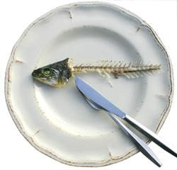 Eaten fish on clean plate with intact head
