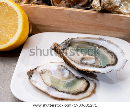 Eating of fresh big raw fine de claires vertes green french oysters from Marennes-Oleron, close up Photo stock ©