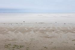 Ebb tide at the north sea coast