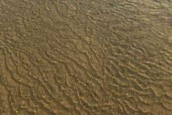 Ebbing tide, Jersey, U.K. Seawater flowing over sand.
