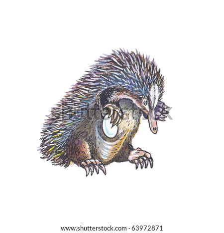 Mammals Volume 1 of the new illustrated Animal Kingdom
