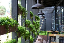 Eco architecture. Green cafe with hydroponic plants on the facade. Ecology and green living in city, urban environment concept. Modern building covered green plant. Abstract  background.