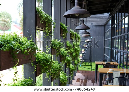 Eco architecture. Green cafe with hydroponic plants on the facade. Ecology and green living in city, urban environment concept. Modern building covered green plant. Abstract  background. #748864249