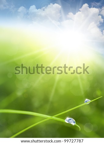 Eco background with Sky, Grass, Water Drops and Cloud reflections into Raindrops