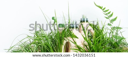 Eco blank design packaging  of natural bottles among green grass. Bio organic detergent product. Environmental facility.