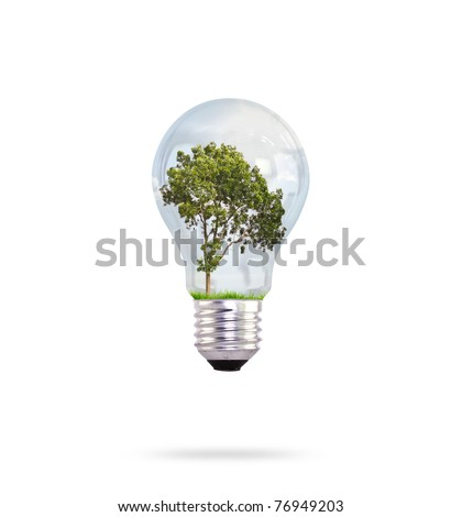 Eco concept: green tree growing in a bulb.