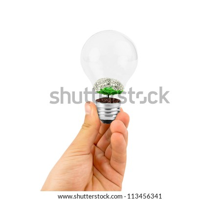 eco concept:hand holding light bulb with plant and money inside