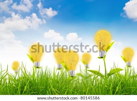 Eco concept -light bulb grow in the grass against blue sky
