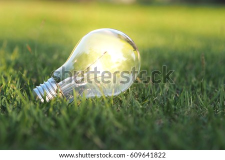 Eco concept - Lightbulb in green nature in bright light #609641822