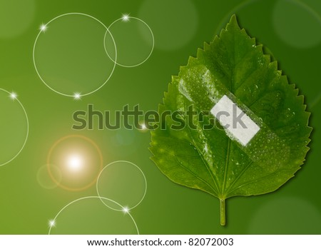 eco ecology or nature protection concept with leaf and bandage on green background
