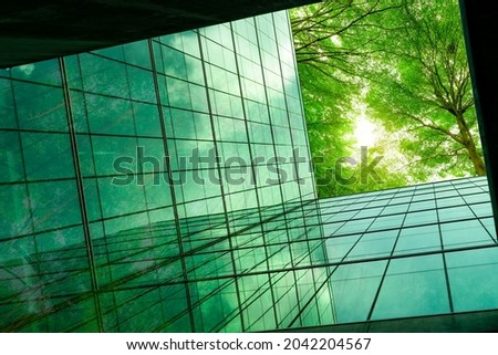 Eco-friendly building in the modern city. Green tree branches with leaves and sustainable glass building for reducing heat and carbon dioxide. Office building with green environment. Go green concept.