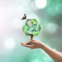 Eco friendly concept with bio recycle world tree planting on volunteer's hands. Elements of this image furnished by NASA