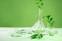Eco friendly cosmetics, concept. organic products, research and synthesis.