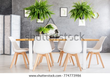 Eco friendly house dining room interior with fern plants and a screen #774773986