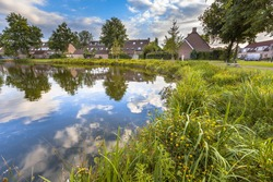 Eco friendly lakeside with gentle slope to stimulate growth of wildflowers and swamp vegetation in a recreational park in Soest, Netherlands