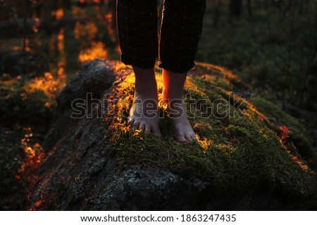 Eco-friendly lifestyle, being in touch with nature. Women's bare feet stand on a stone covered with moss. Sunny forest