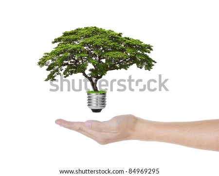 eco green energy saving in the future concept, hand holding tree growing out of electric light bulb